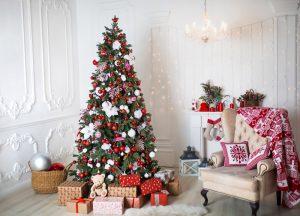 Szukasz idealnej świątecznej choinki?